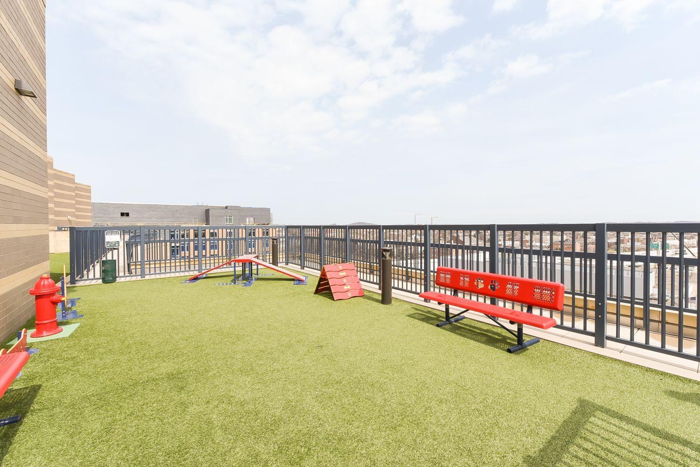 park-chelsea-rooftop-dog-park-equipment