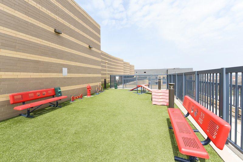 park-chelsea-rooftop-dog-park